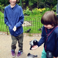 Augie feeds the birds