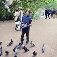 Aidan feeds more birds