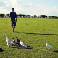Jason and his feathered friends
