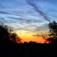 sunset joes house